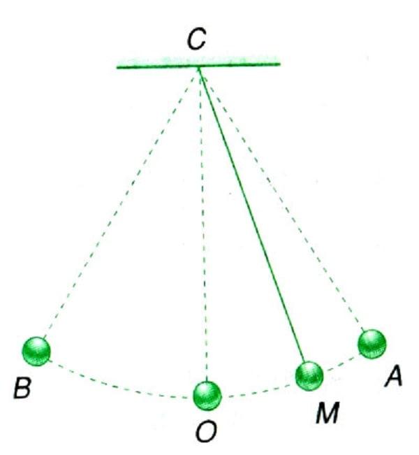 Hình ảnh minh họa cho phần bài tập liên quan đến dao động điều hòa